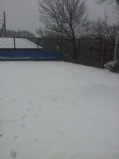 2012-01-20 雪.jpg