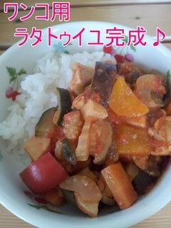 タラトゥユNO5.jpg