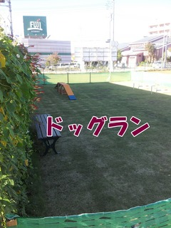 瀬谷3.jpg