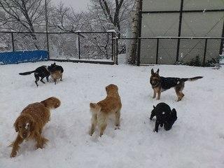 雪 訓練所.jpg
